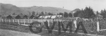 Vernon Internment Camp thumbnail